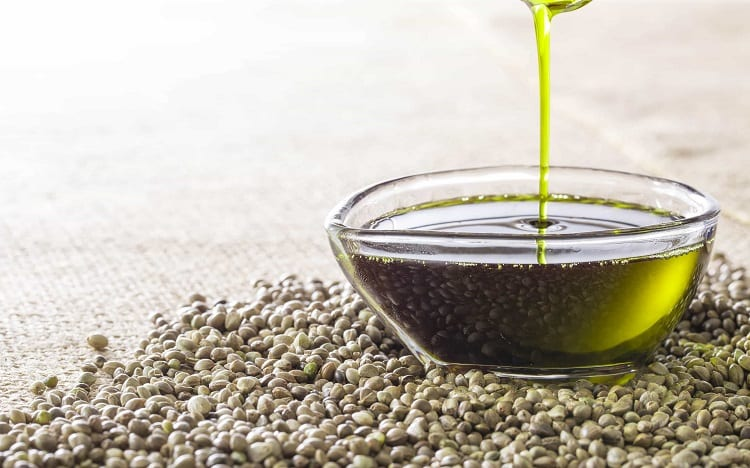 CBD Oil vs Hemp Oil: What is the Difference 1