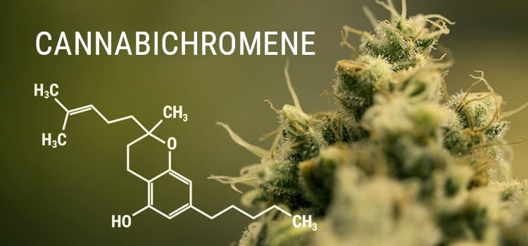 molecule of cbc