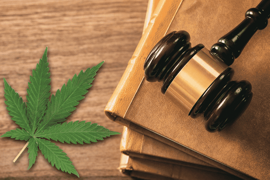 CBD Legal Situation - The Final Answer