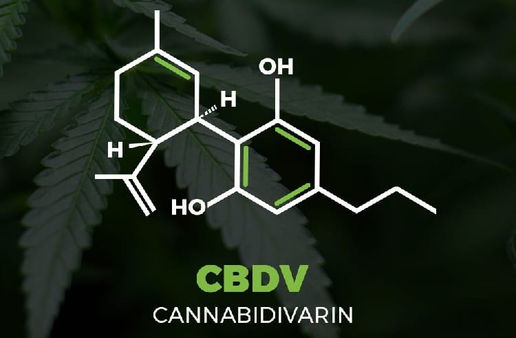 Cbdv or Cannabidivarin molecule