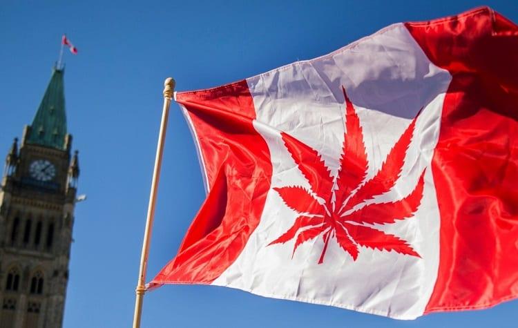 is cbd oil legal in canada