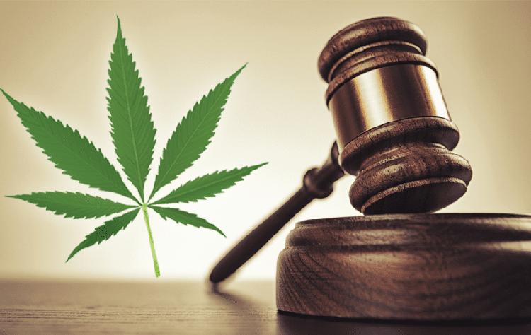 understanding marijuana laws